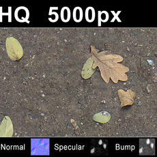 2x Leaves on Sand 2 - High Res