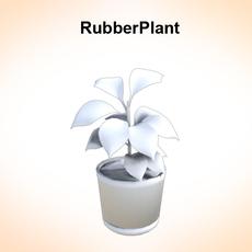 Rubber Plant 3D Model
