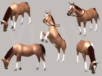 3D Horse 3D Model