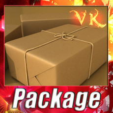 Cardboard Box Wrapped in Brown Paper 3D Model