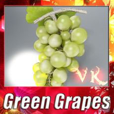 3D Model Green Grapes High Detail 3D Model