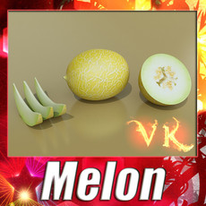 3D Model Melon High Res Textures 3D Model