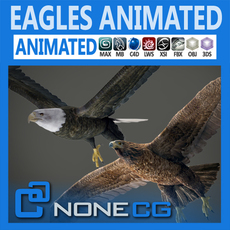 Animated Bald and Golden Eagle