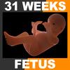 04 25 58 911 embryofetuspack th046 4