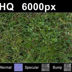 Lawn 5 - High Res Set