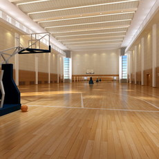 Basketball Arena 002 3D Model