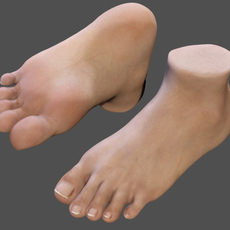 realistic foot (textured) 3D Model