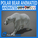 Animated Polar Bear 3D Model