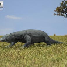 Komodo Dragon (Monitor, Varanus Komodoensis) 3D Model