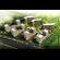 3d building 171 3D Model