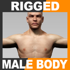 Rigged Human Male Body 3D Model