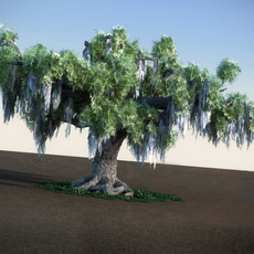 Oak with Moss HiPoly tree 3D Model