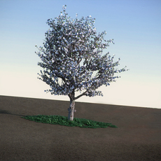 Apple spring with flowers HiPoly tree 3D Model