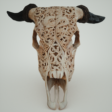 Dragon decorated skull 3D Model