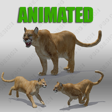 Mountain Lion Animated 3D Model