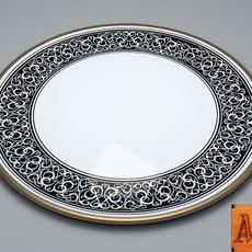 Plate 1 3D Model