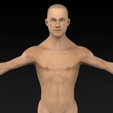 Muscular Human 3D Model