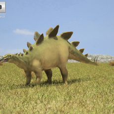 Stegosaurus (Stegosaurus Armatus) 3D Model