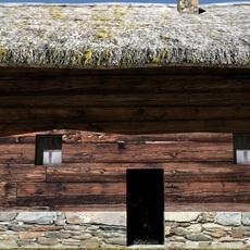wooden hut 3D Model