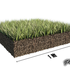Grass patch 01 3D Model
