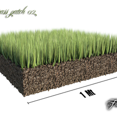 Grass patch 02 3D Model