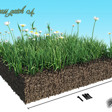 Grass patch 04 3D Model