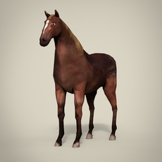 Horse - Low Poly 3D Model