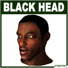 Low Poly Black Male Head 3D Model