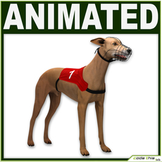 Greyhound Dog CG 3D Model