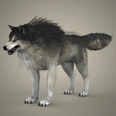 Brown Wolf 3D Model