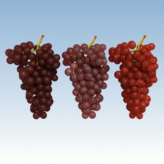 Grapes Red 3D Model