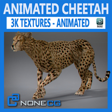 Animated Cheetah 3D Model