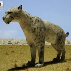 Homotherium 3D Model