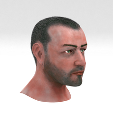 Mid Aged Male Head 3D Model