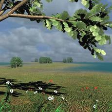 Creating Water Environment in Maya