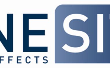 23 24 39 351 cinesite logo march 2012 7