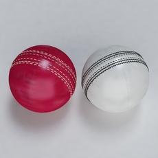 Cricket Ball Standard and Warn 3D Model
