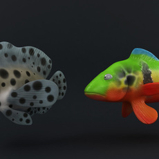 Fish Rigs ( 25 Rigs In total) Final Version for Maya 2.2.1