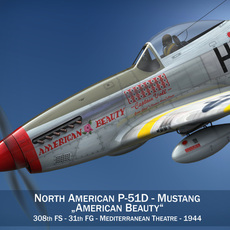 North American P-51D - American Beauty 3D Model