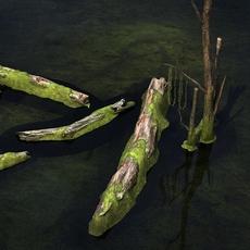 Dead tree Trunk 3D Model