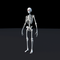 Skeleton Maya Rig for Maya 1.0.0