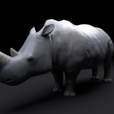 Rhino Rig 3D Model