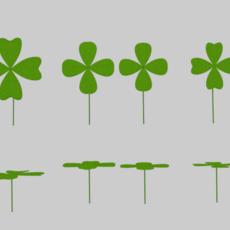 Four Leaf Clover Pack 3D Model