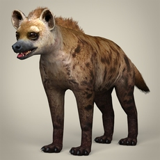 Low Poly Realistic Hyena 3D Model