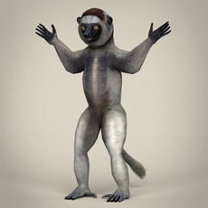 Low Poly Realistic Sifaka Lemur 3D Model