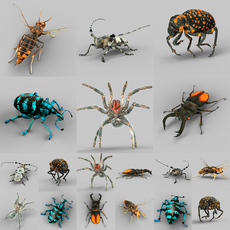 Insect Collection Vol 1 3D Model