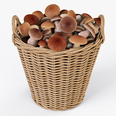 Wicker Basket Ikea Nipprig with Mushrooms 3D Model
