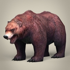 Game Ready Realistic Bear 3D Model