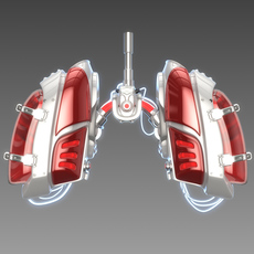 Mechanical lungs concept 3D Model