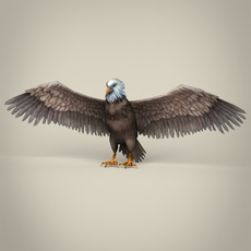 Low Poly Realistic Eagle 3D Model